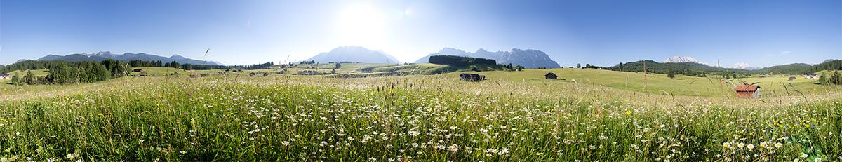 Bucklwiesen